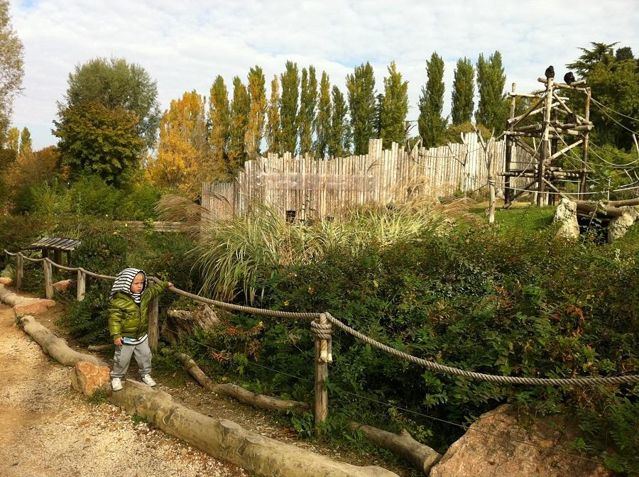 Verona con bambini tra cultura e parchi divertimento