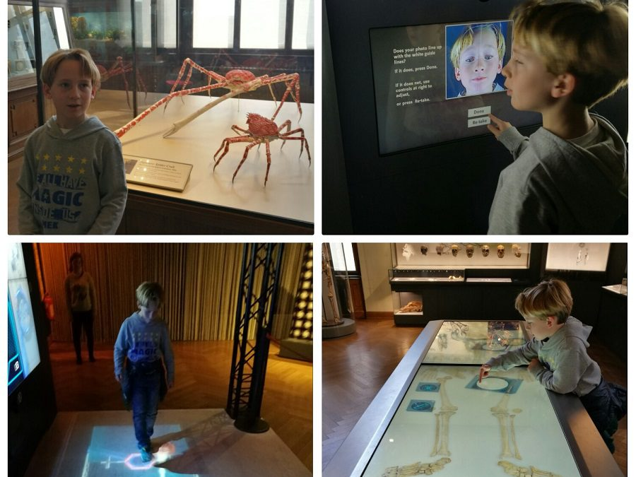 Vienna con bambini, cosa vedere? Il museo interattivo di storia naturale!