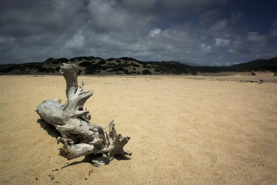 Sardegna insolita e inaspettata