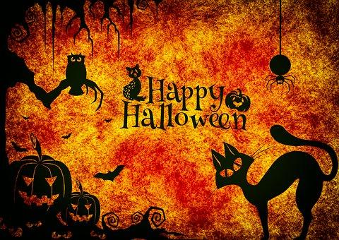 Cosa fare a Halloween? parchi divertimento, sagre, feste….ecco i nostri suggerimenti per la festa più spaventosa dell'anno!